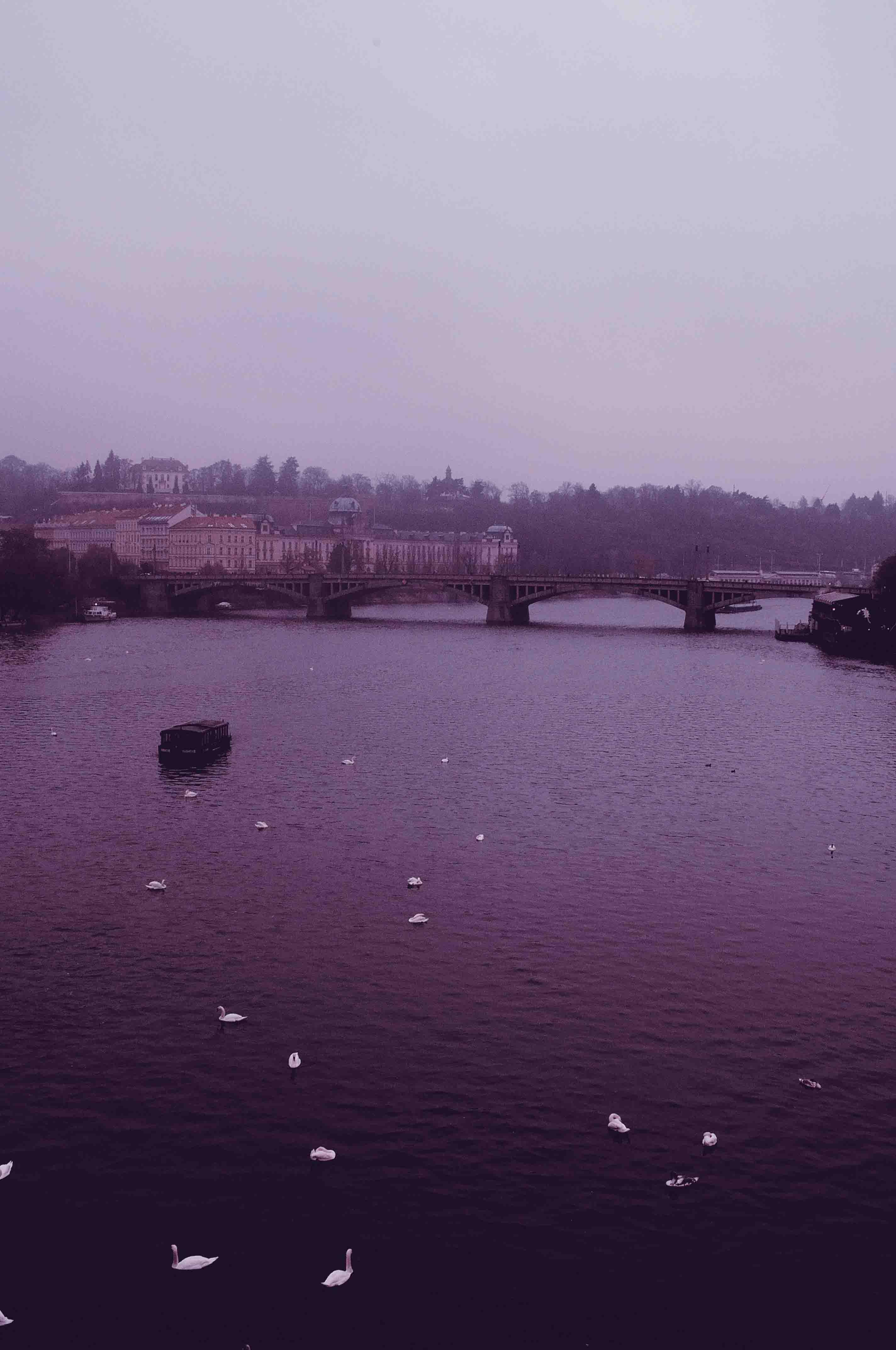 Prague, 2014
